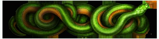 Змеиный клубок