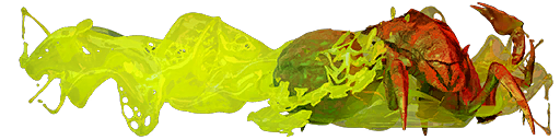 Нашивка «Против арахнидов»