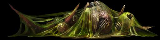 Коллекционер жуков