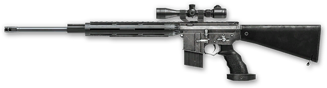 M16 SPR Custom, 99$