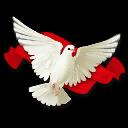 Миру - мир