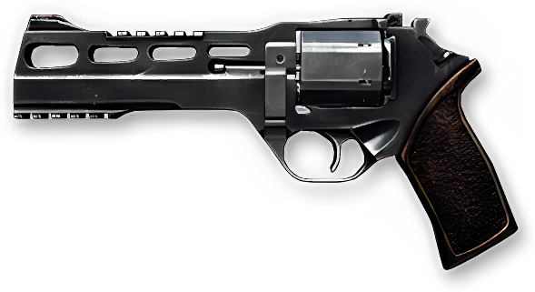 Rhino 60DS (0).png